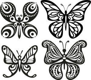 وکتور طرح پروانه